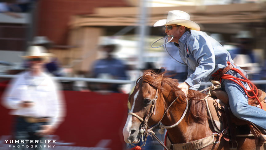 Rodeo Finals And The Winners Are Calgary Stampede